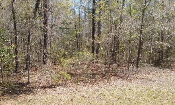 Residential Land - Leland, NC (photo 1)