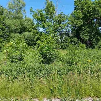 2 W Meadow Creek Lane, Lynn Center, IL - USA (photo 3)