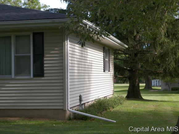 221 W West, Oneida, IL - USA (photo 4)