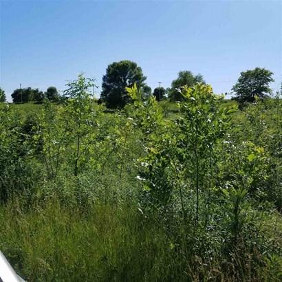 2 W Meadow Creek Lane, Lynn Center, IL - USA (photo 2)