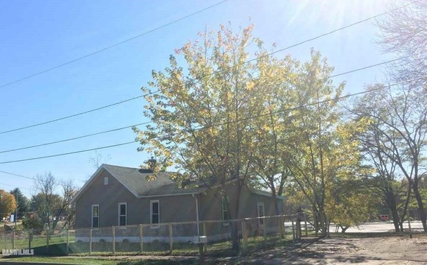 1423 Pike Street, Savanna, IL - USA (photo 2)