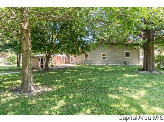 1328 Moshier Ave., Galesburg, IL - USA (photo 4)