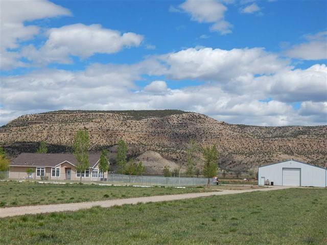 2022 45 Road, De Beque, CO - USA (photo 1)