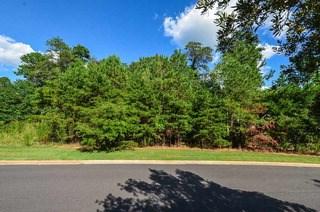 331 Hidden Creek Circle, Spartanburg, SC - USA (photo 2)