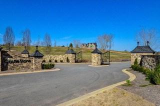 726 Castle Stone Drive, Moore, SC - USA (photo 3)