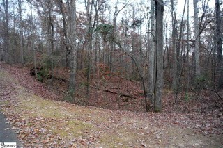00 Pintail Road, Anderson, SC - USA (photo 1)