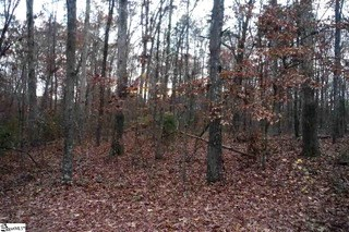 00 Pintail Road, Anderson, SC - USA (photo 2)