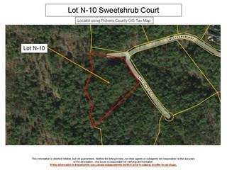 Lot N-10 Sweetshrub Court, Sunset, SC - USA (photo 3)