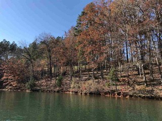 Lot 13 Little Keowee Bay, West Union, SC - USA (photo 2)