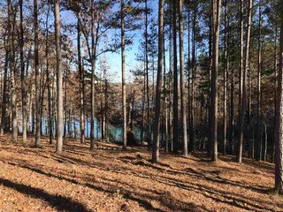 Lot 13 Little Keowee Bay, West Union, SC - USA (photo 4)