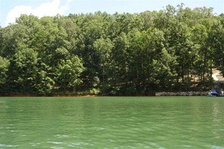 Lot 35 Wilderness Cove, West Union, SC - USA (photo 1)