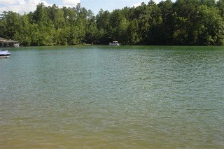 Lot 35 Wilderness Cove, West Union, SC - USA (photo 2)