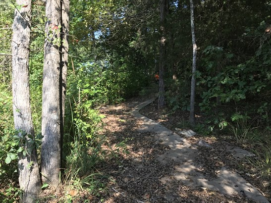 00 Osceola Trail, Fair Play, SC - USA (photo 5)