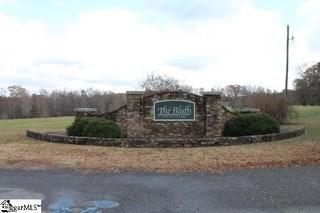 00 Pinson Farm Road, Belton, SC - USA (photo 3)