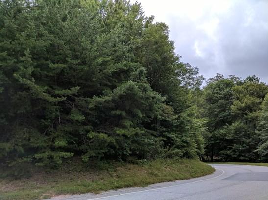 0 Indian Pipe Trail, Landrum, SC - USA (photo 1)