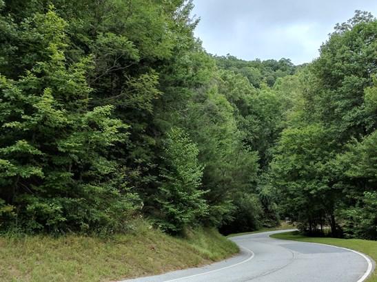 0 Indian Pipe Trail, Landrum, SC - USA (photo 3)