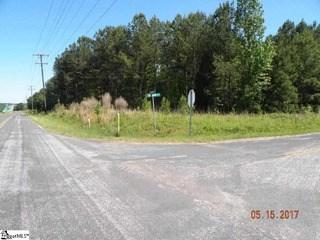 202 N Nelson Drive, Fountain Inn, SC - USA (photo 2)