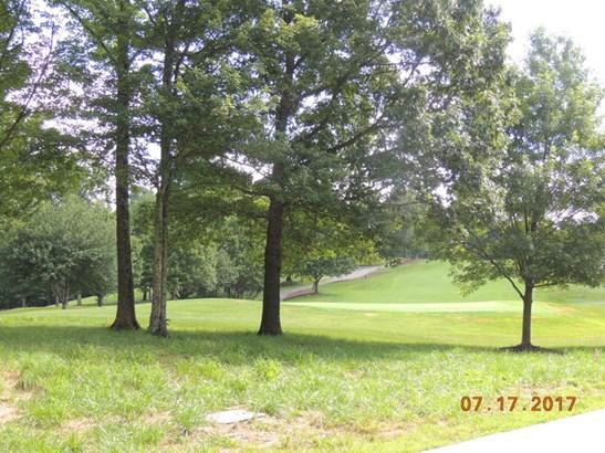 28 Raven Road, Landrum, SC - USA (photo 5)