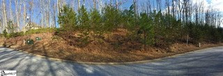 19 Timberline Drive, Travelers Rest, SC - USA (photo 1)