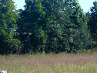 00 Highway 8, Easley, SC - USA (photo 3)