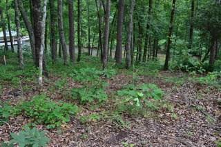 715 Timberbrook Trail, Salem, SC - USA (photo 5)