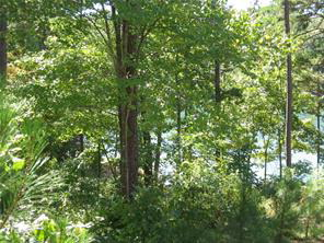 17 Riverstone Drive, Salem, SC - USA (photo 5)