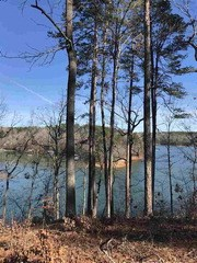 Lot 8 Little Keowee Bay, West Union, SC - USA (photo 1)