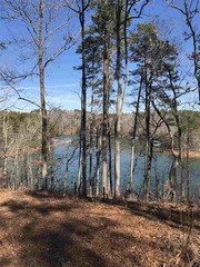 Lot 8 Little Keowee Bay, West Union, SC - USA (photo 4)