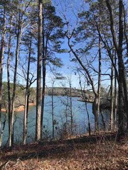 Lot 8 Little Keowee Bay, West Union, SC - USA (photo 5)