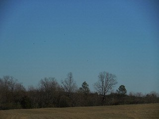 00 Highway 93, Liberty, SC - USA (photo 5)