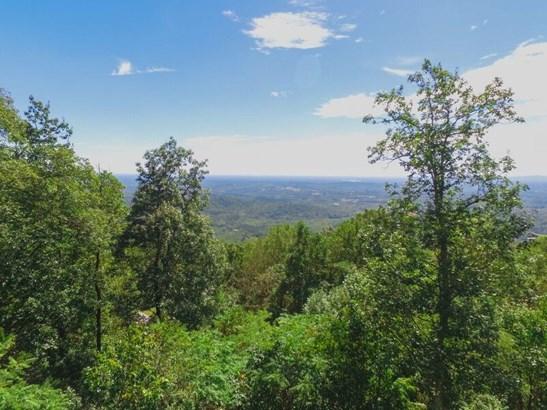 225 Lost Trail Drive, Landrum, SC - USA (photo 1)