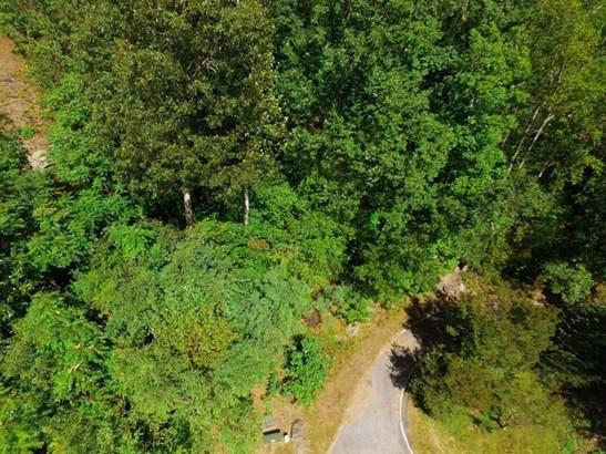 225 Lost Trail Drive, Landrum, SC - USA (photo 4)