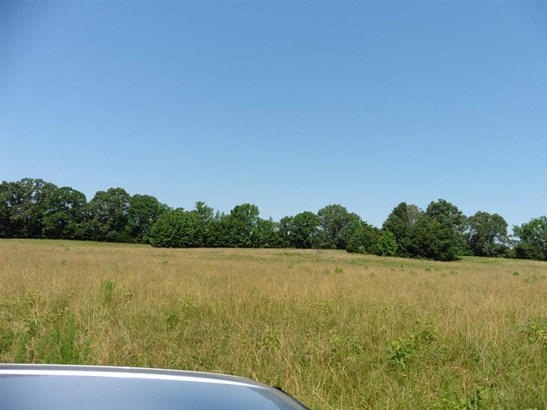 Land - Unincorporated, TN (photo 4)