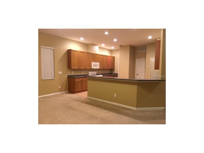 4528 Barrister Dr, Clermont, FL - USA (photo 2)