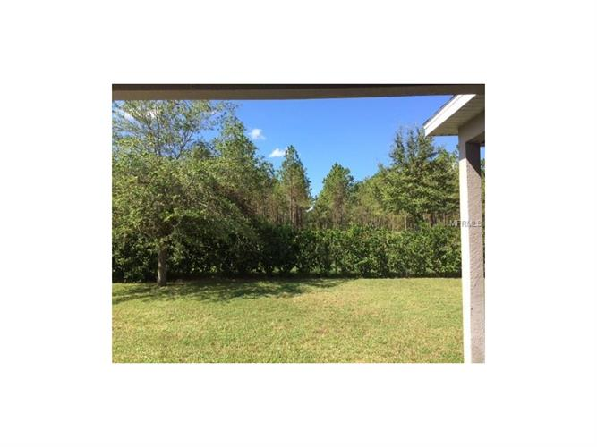 4528 Barrister Dr, Clermont, FL - USA (photo 3)