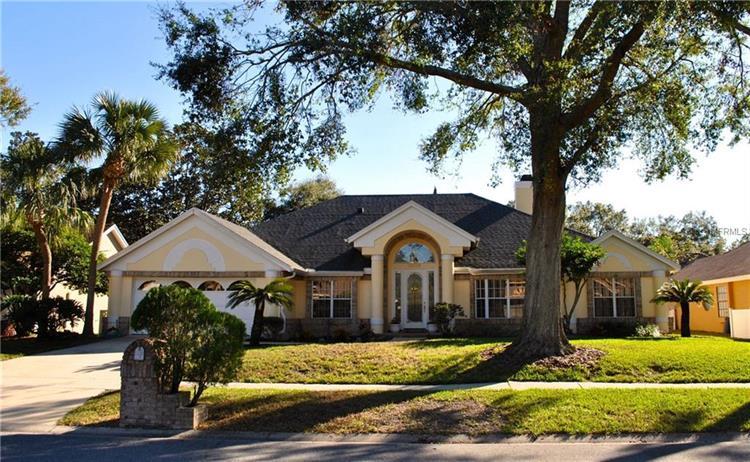 8020 Winpine Ct, Orlando, FL - USA (photo 1)