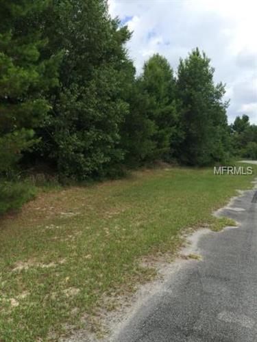 160 Mill Grant Road, Debary, FL - USA (photo 3)