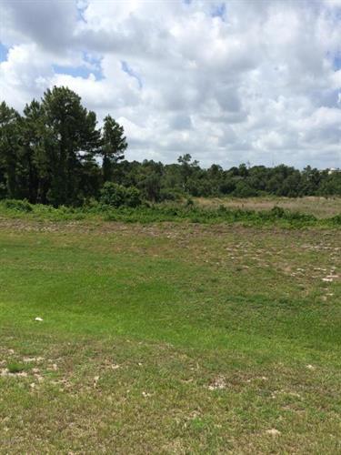 170 Mill Grant Road, Debary, FL - USA (photo 4)