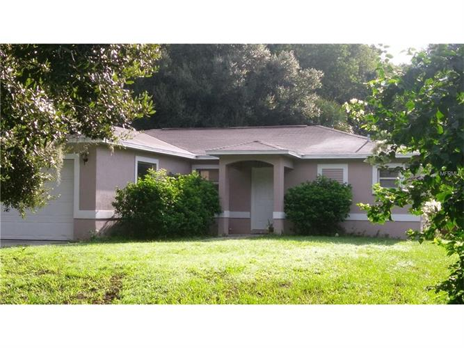 1007 Grape Ave, St. Cloud, FL - USA (photo 1)