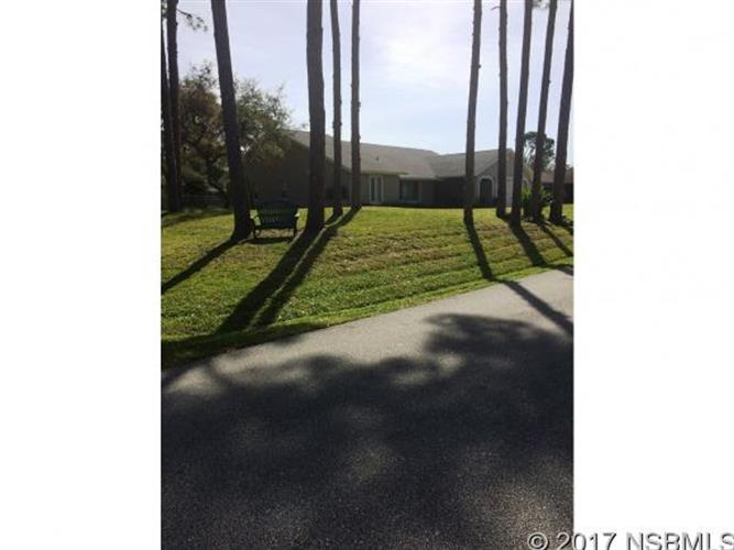 2803 Sabal Palm Dr, Edgewater, FL - USA (photo 2)