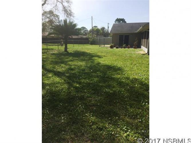 2803 Sabal Palm Dr, Edgewater, FL - USA (photo 4)