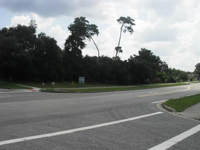 1815 N Acadian Dr, Deltona, FL - USA (photo 3)