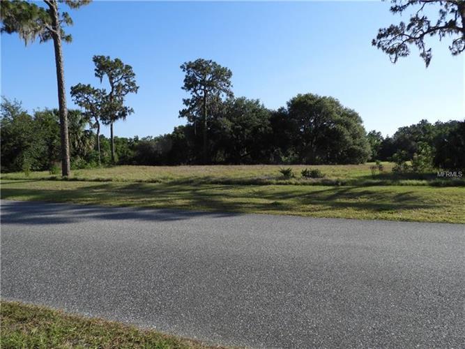 Grand Oak Ln, Tavares, FL - USA (photo 1)