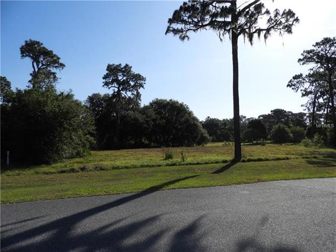 Grand Oak Ln, Tavares, FL - USA (photo 2)