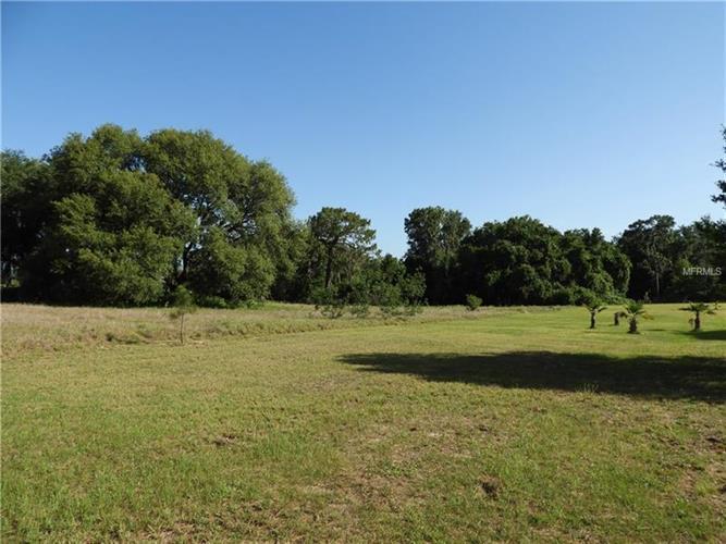 Grand Oak Ln, Tavares, FL - USA (photo 5)
