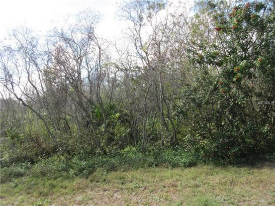 Hacienda Cir, Kissimmee, FL - USA (photo 2)