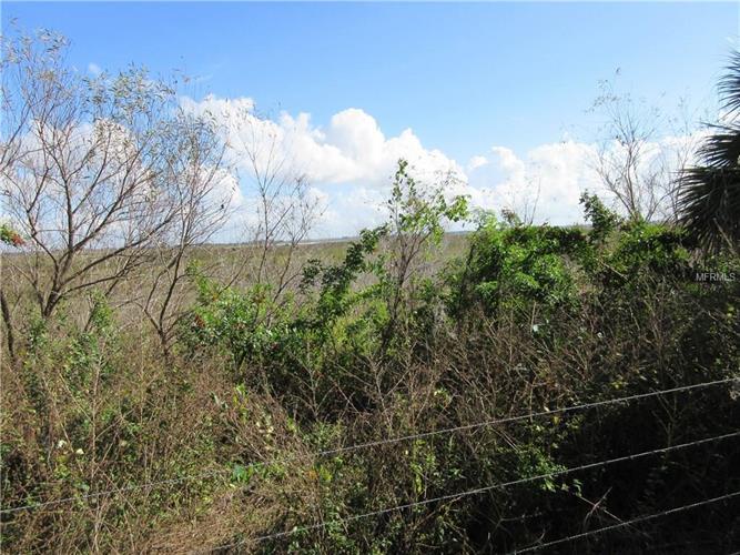 Hacienda Cir, Kissimmee, FL - USA (photo 5)