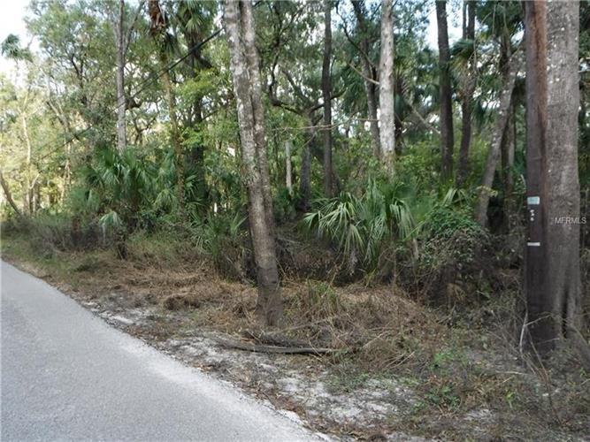 River Dr, Valrico, FL - USA (photo 1)