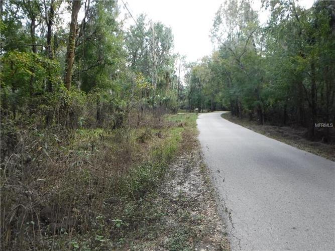 River Dr, Valrico, FL - USA (photo 2)