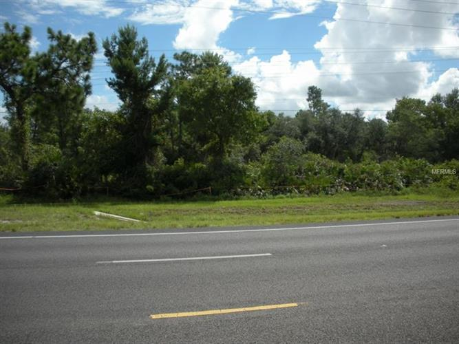 E Irlo Bronson Mem Hwy, St. Cloud, FL - USA (photo 5)